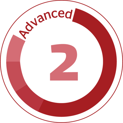 Picture of Advanced 2